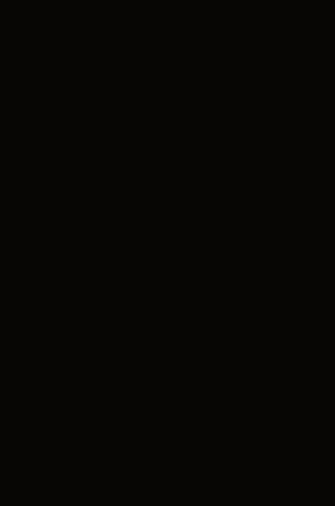 sort bilde